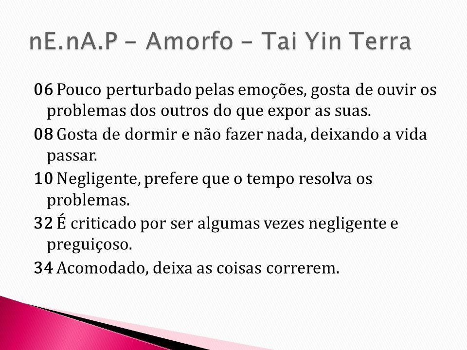 nE.nA.P - Amorfo - Tai Yin Terra