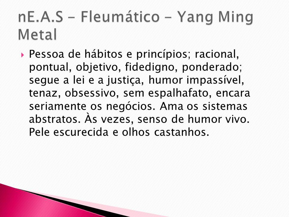 nE.A.S - Fleumático - Yang Ming Metal