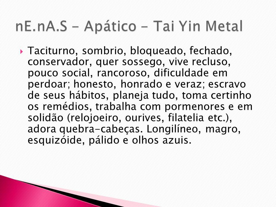 nE.nA.S - Apático - Tai Yin Metal
