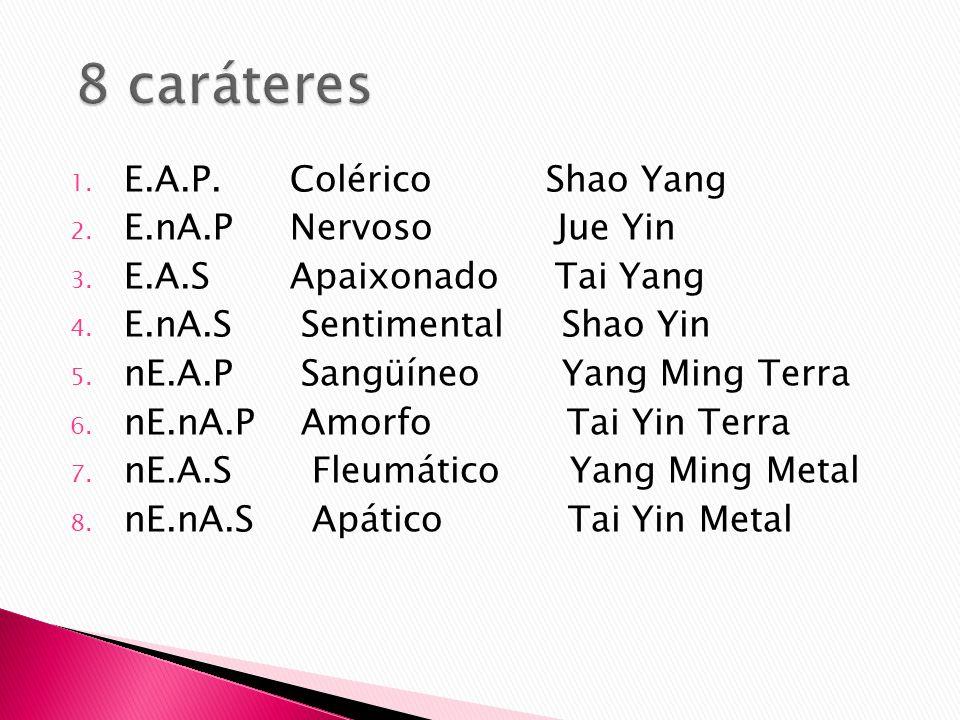 8 caráteres E.A.P. Colérico Shao Yang E.nA.P Nervoso Jue Yin