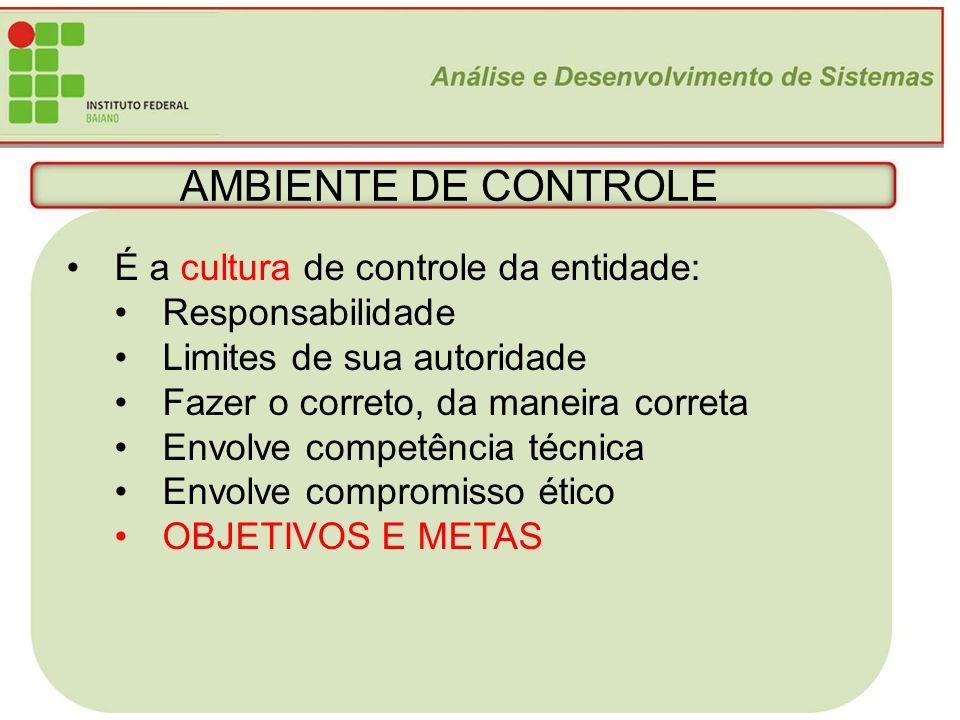AMBIENTE DE CONTROLE É a cultura de controle da entidade:
