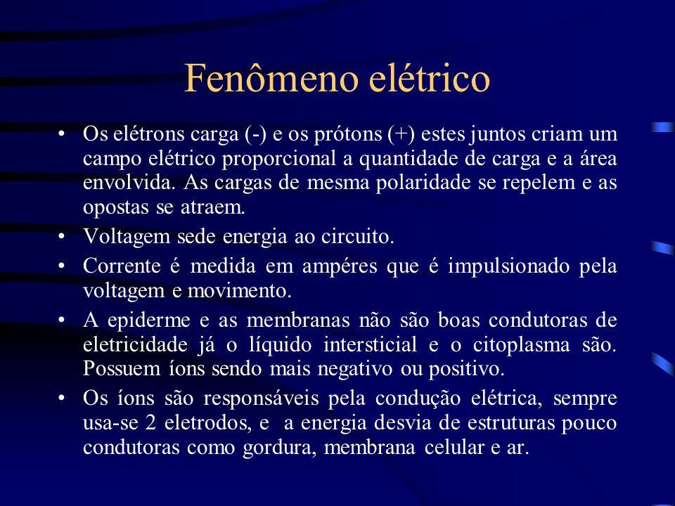 Fenômeno elétrico