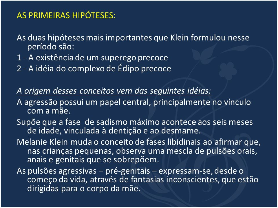 AS PRIMEIRAS HIPÓTESES:
