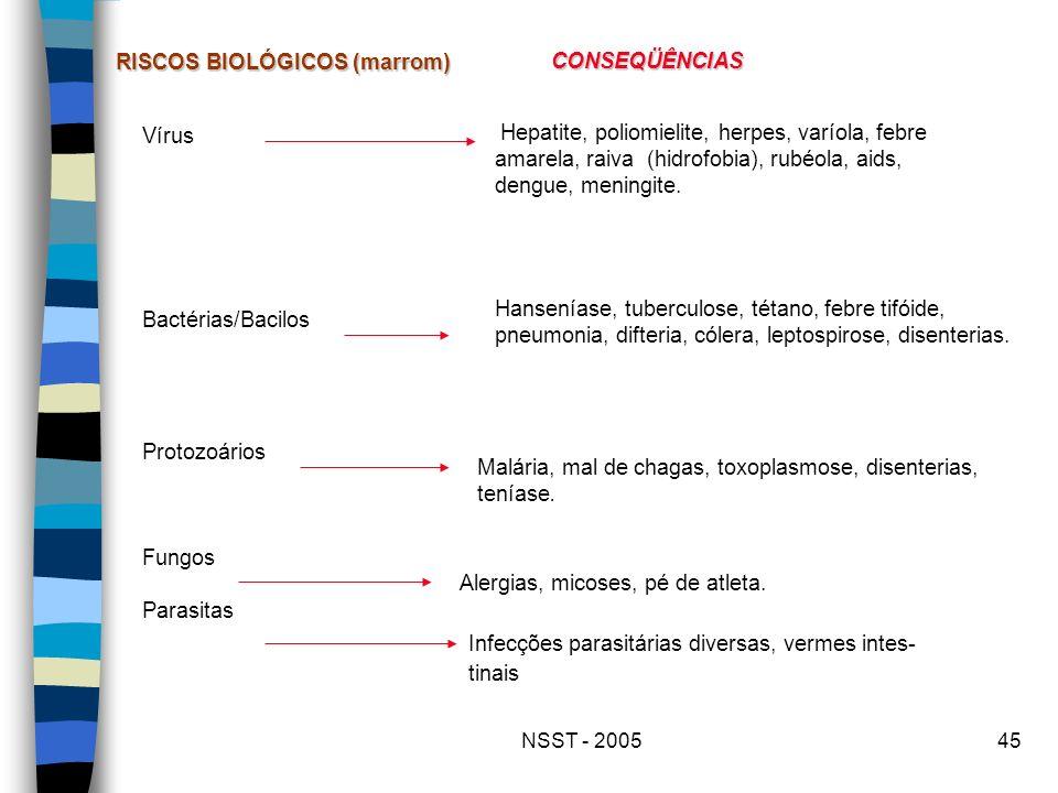 RISCOS BIOLÓGICOS (marrom) CONSEQÜÊNCIAS