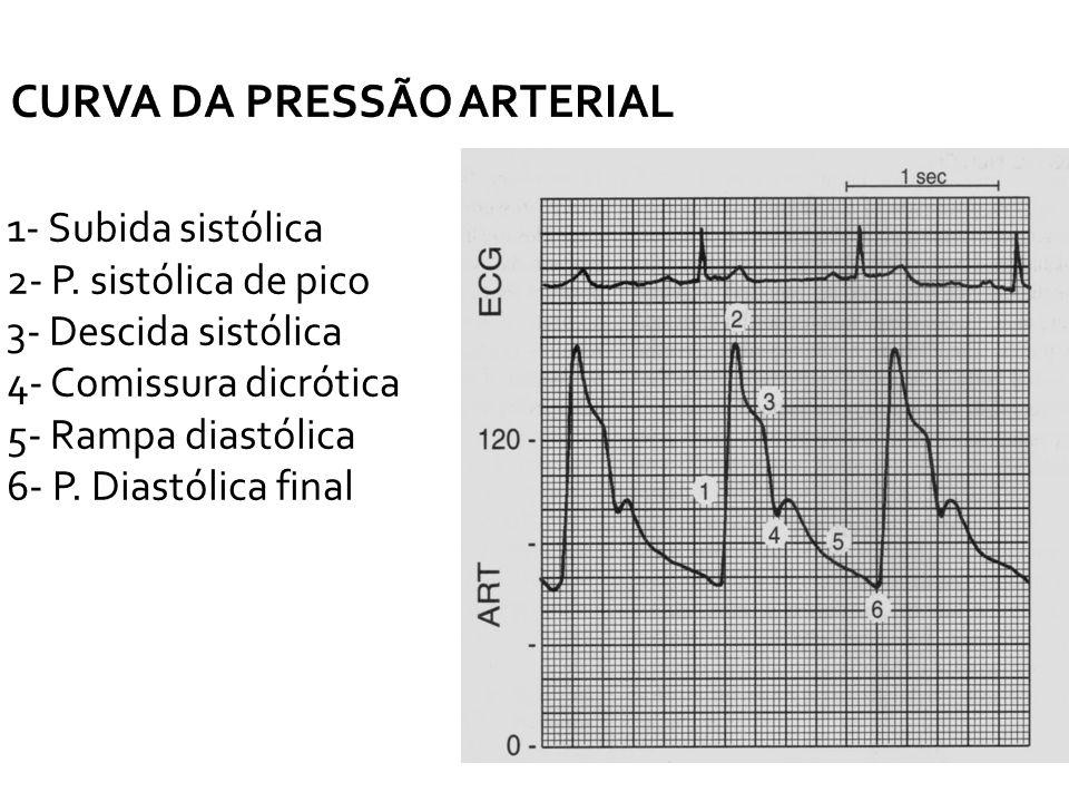 CURVA DA PRESSÃO ARTERIAL