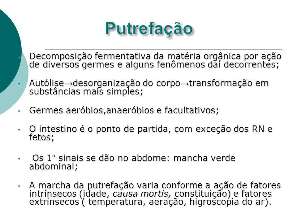 Putrefação Decomposição fermentativa da matéria orgânica por ação de diversos germes e alguns fenômenos daí decorrentes;
