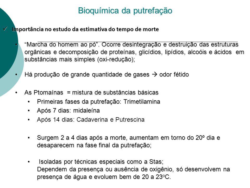 Bioquímica da putrefação