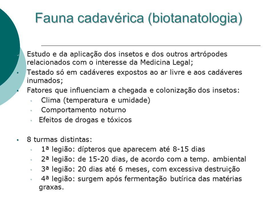 Fauna cadavérica (biotanatologia)