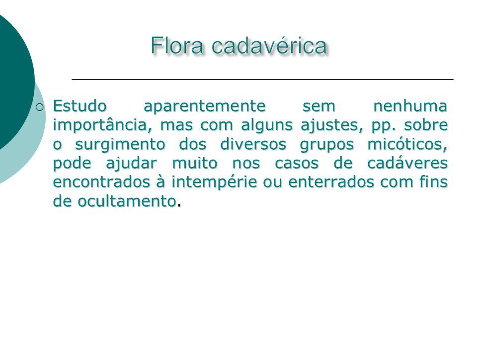 Flora cadavérica