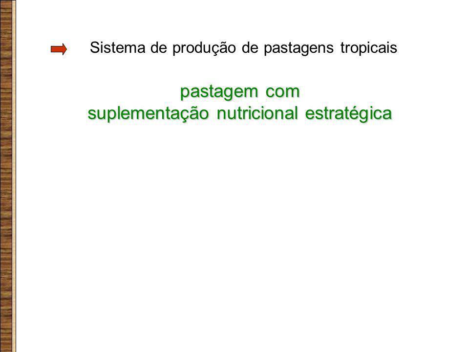 suplementação nutricional estratégica