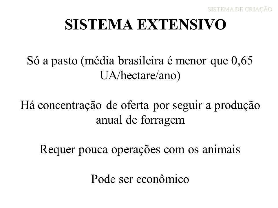 SISTEMA DE CRIAÇÃO SISTEMA EXTENSIVO. Só a pasto (média brasileira é menor que 0,65 UA/hectare/ano)