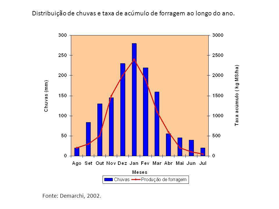 Distribuição de chuvas e taxa de acúmulo de forragem ao longo do ano.