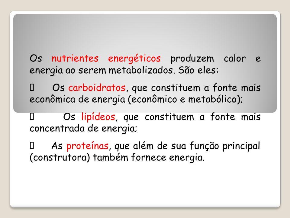 Os nutrientes energéticos produzem calor e energia ao serem metabolizados. São eles: