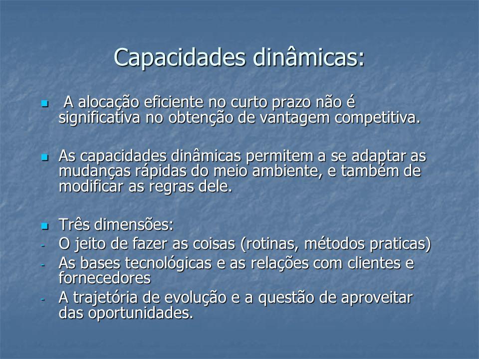 Capacidades dinâmicas: