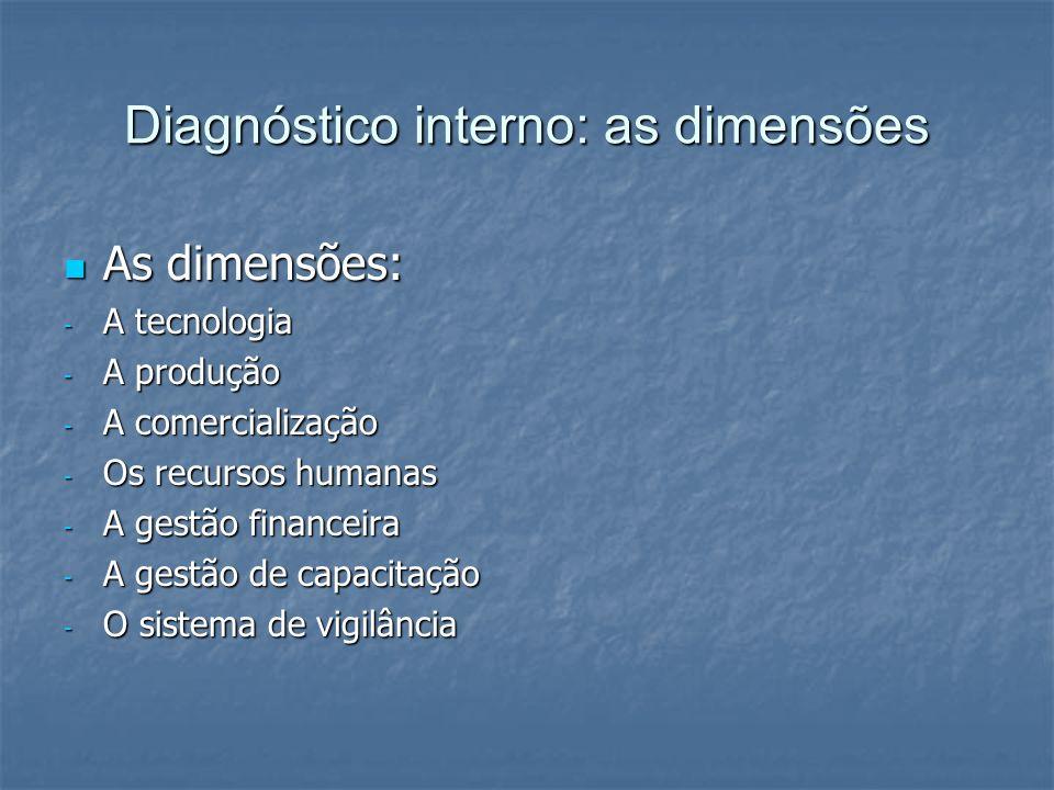 Diagnóstico interno: as dimensões