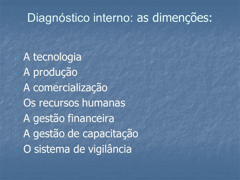 Diagnóstico interno: as dimenções: