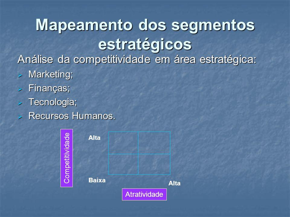 Mapeamento dos segmentos estratégicos
