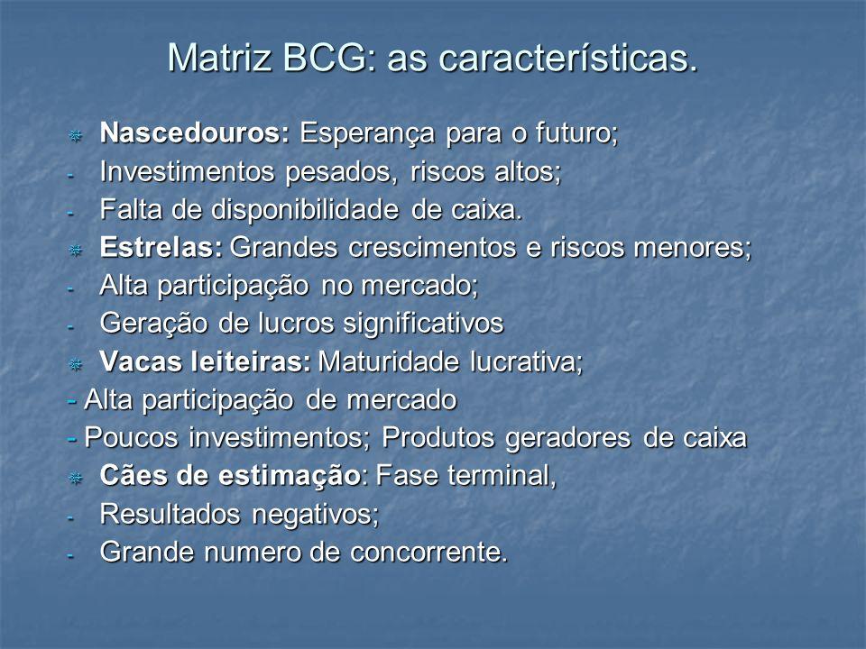 Matriz BCG: as características.