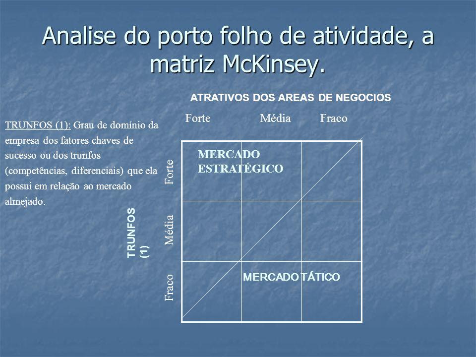 Analise do porto folho de atividade, a matriz McKinsey.