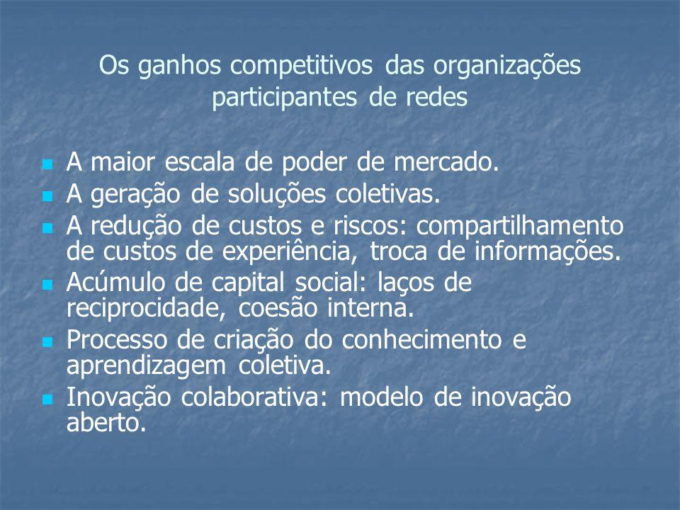 Os ganhos competitivos das organizações participantes de redes