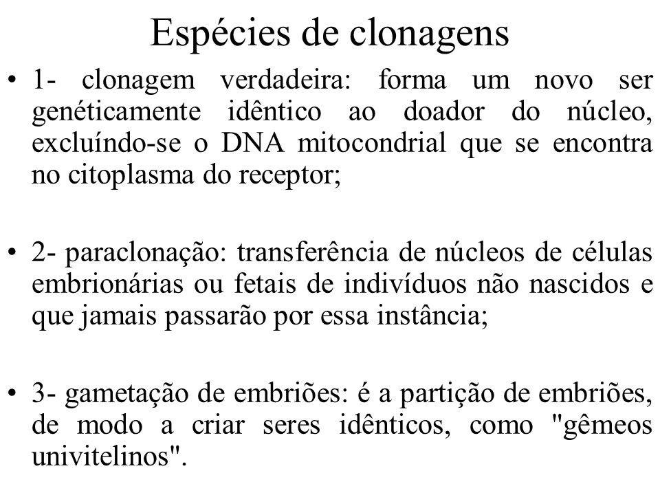 Espécies de clonagens
