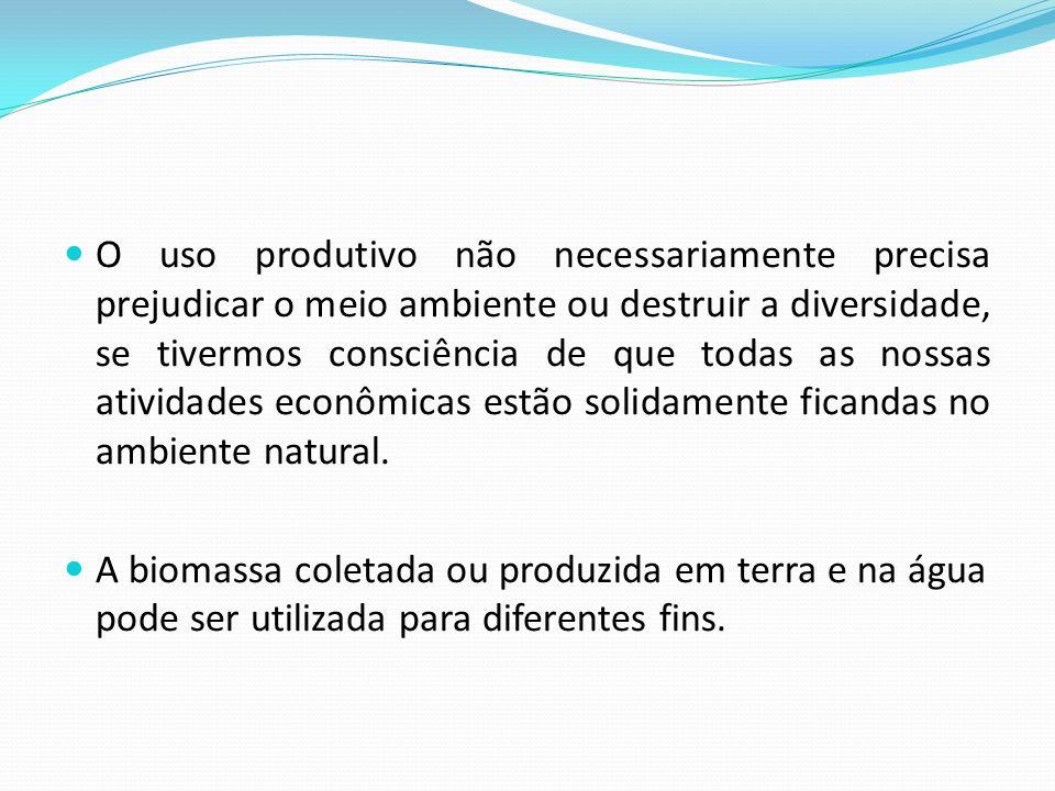 O uso produtivo não necessariamente precisa prejudicar o meio ambiente ou destruir a diversidade, se tivermos consciência de que todas as nossas atividades econômicas estão solidamente ficandas no ambiente natural.