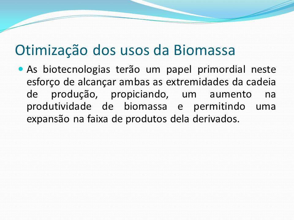Otimização dos usos da Biomassa