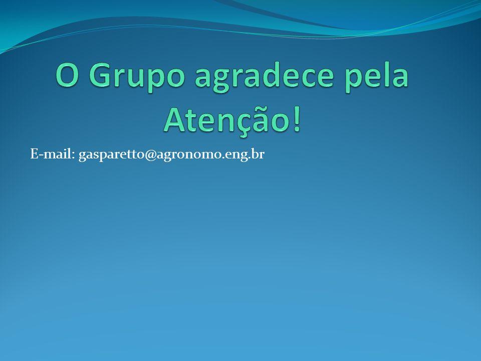 O Grupo agradece pela Atenção!