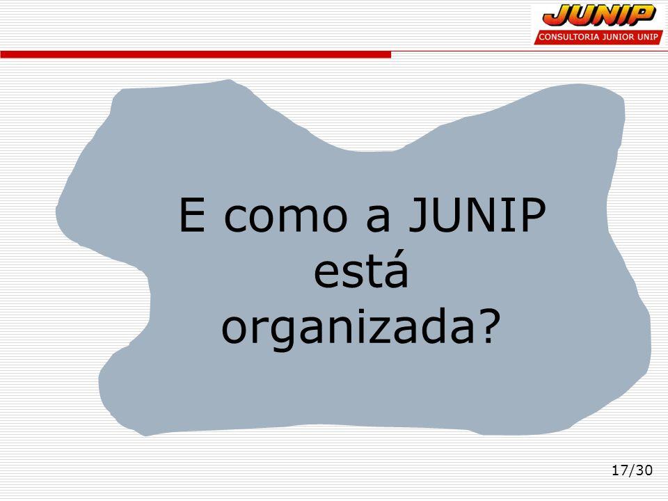 E como a JUNIP está organizada