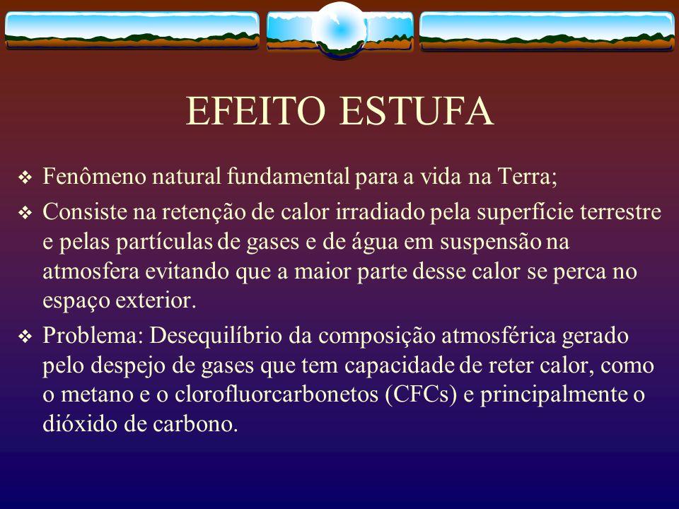 EFEITO ESTUFA Fenômeno natural fundamental para a vida na Terra;
