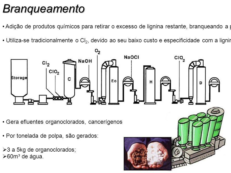 Branqueamento Adição de produtos químicos para retirar o excesso de lignina restante, branqueando a polpa.