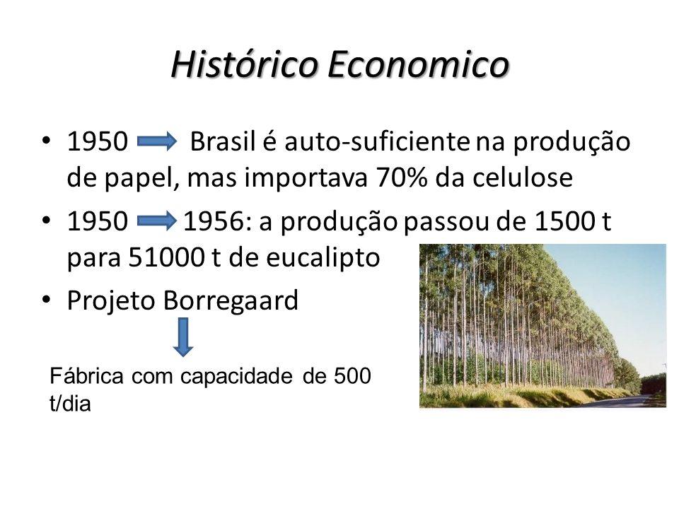 Histórico Economico 1950 Brasil é auto-suficiente na produção de papel, mas importava 70% da celulose.