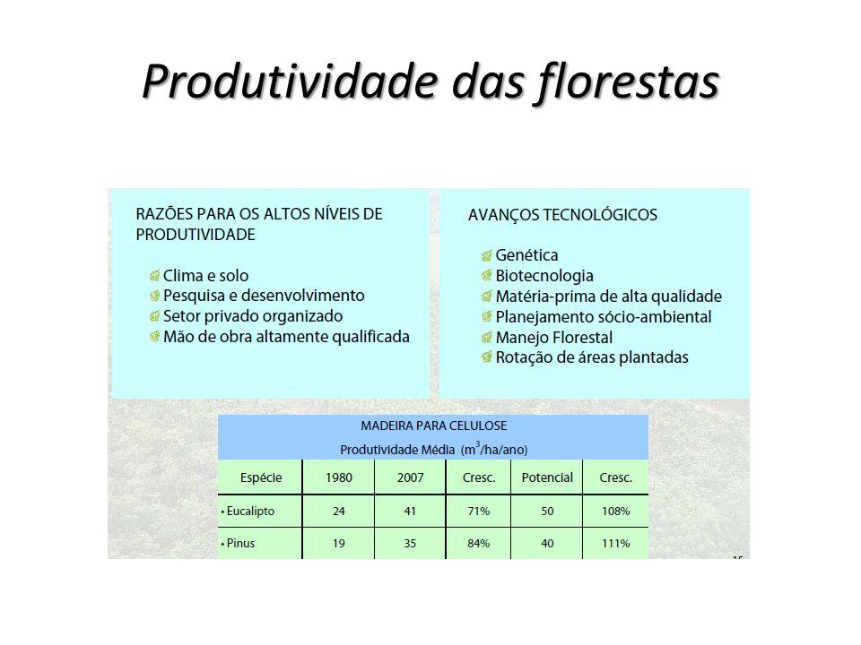 Produtividade das florestas