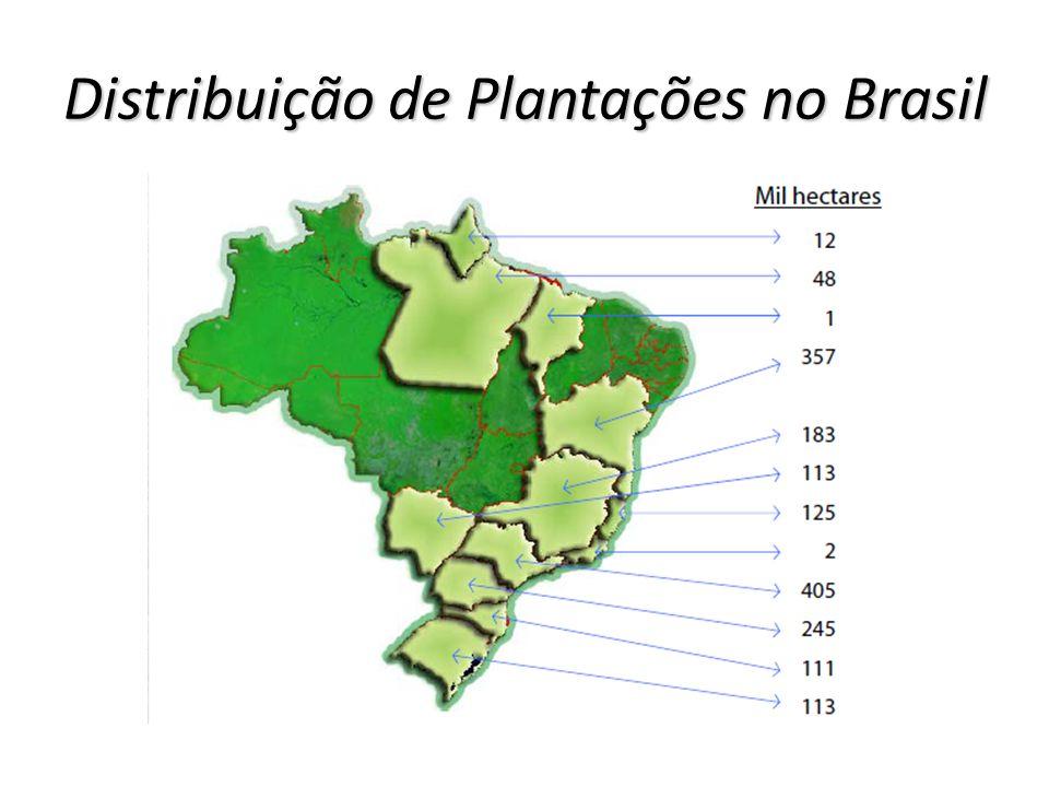 Distribuição de Plantações no Brasil