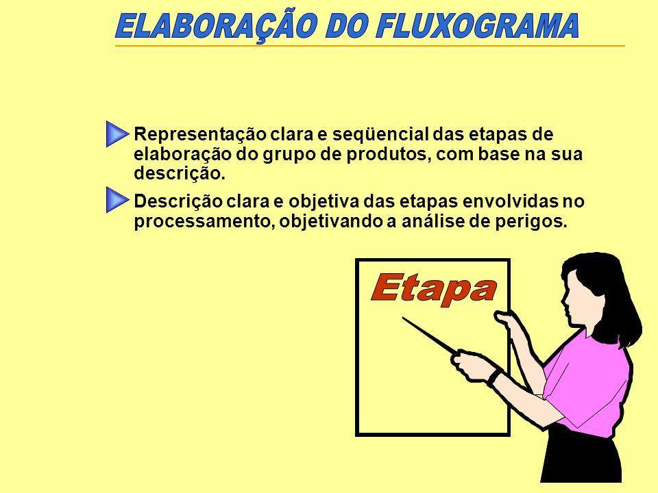 ELABORAÇÃO DO FLUXOGRAMA