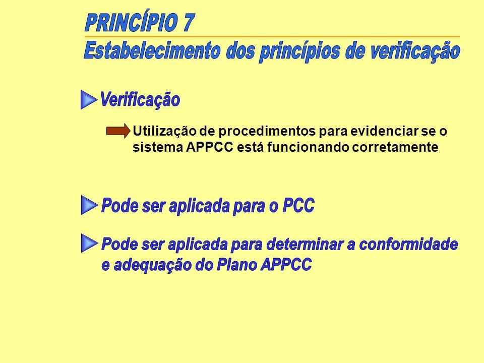 Estabelecimento dos princípios de verificação