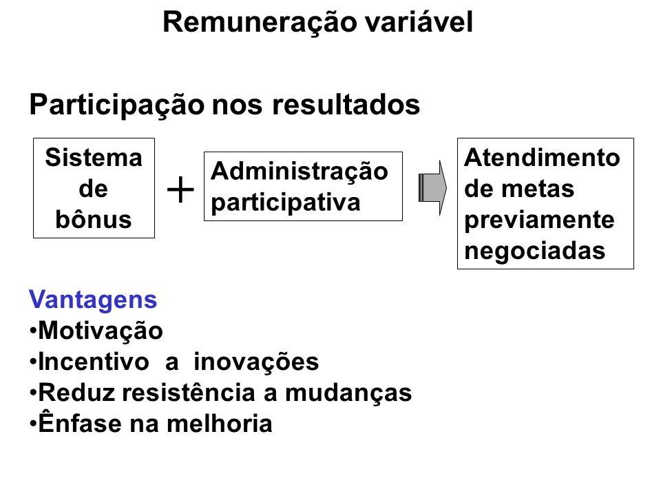 + Remuneração variável Participação nos resultados Sistema de bônus