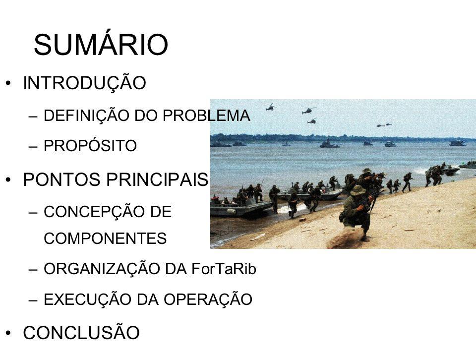SUMÁRIO INTRODUÇÃO PONTOS PRINCIPAIS CONCLUSÃO DEFINIÇÃO DO PROBLEMA