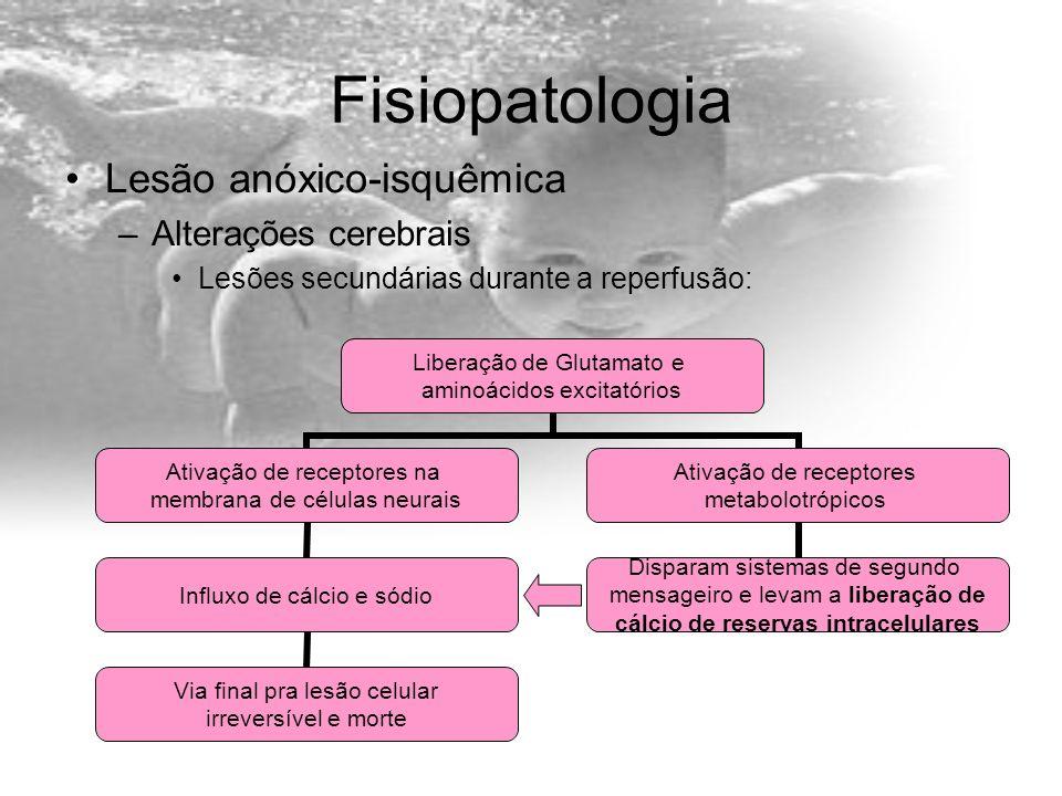 Fisiopatologia Lesão anóxico-isquêmica Alterações cerebrais