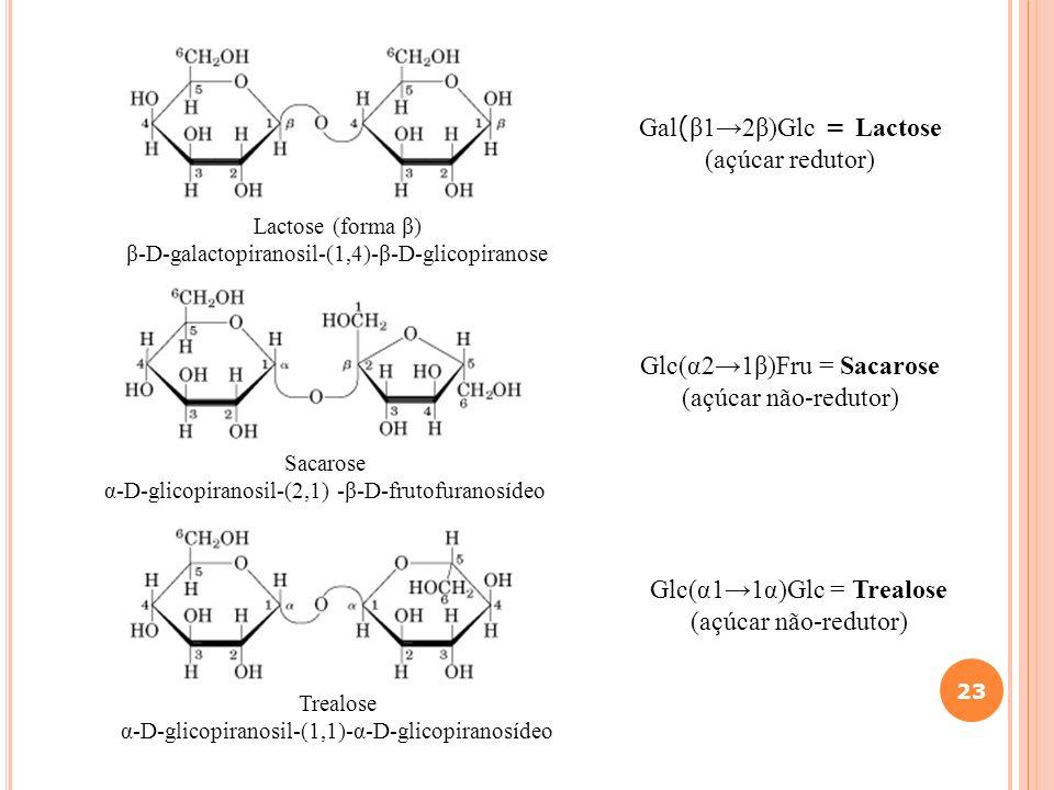 Glc(α2→1β)Fru = Sacarose (açúcar não-redutor)