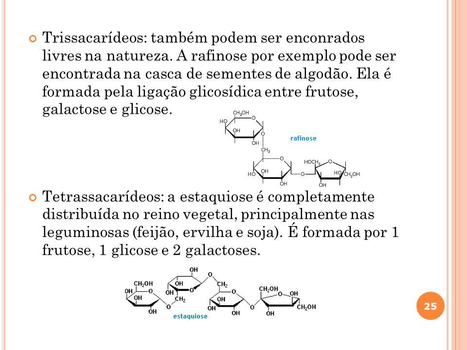 Trissacarídeos: também podem ser enconrados livres na natureza