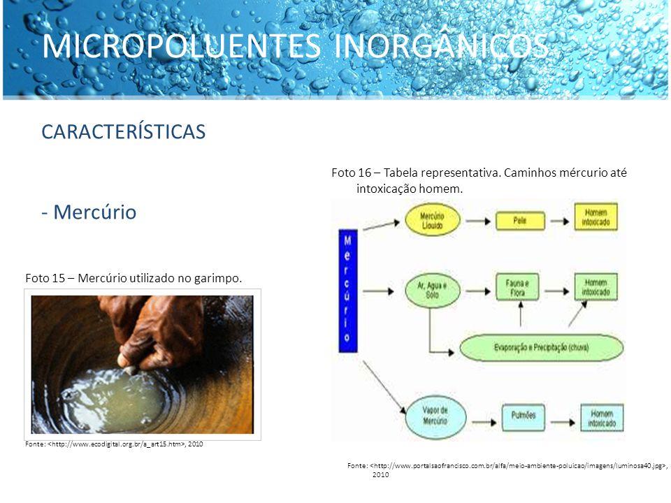 MICROPOLUENTES INORGÂNICOS