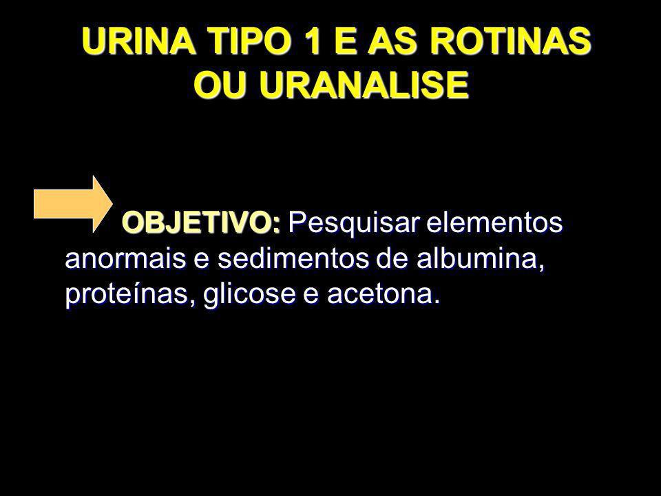 URINA TIPO 1 E AS ROTINAS OU URANALISE