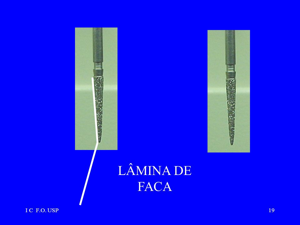 LÂMINA DE FACA I C F.O. USP