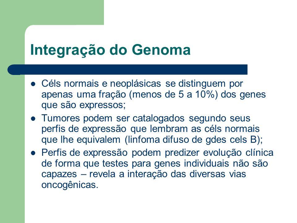 Integração do Genoma Céls normais e neoplásicas se distinguem por apenas uma fração (menos de 5 a 10%) dos genes que são expressos;