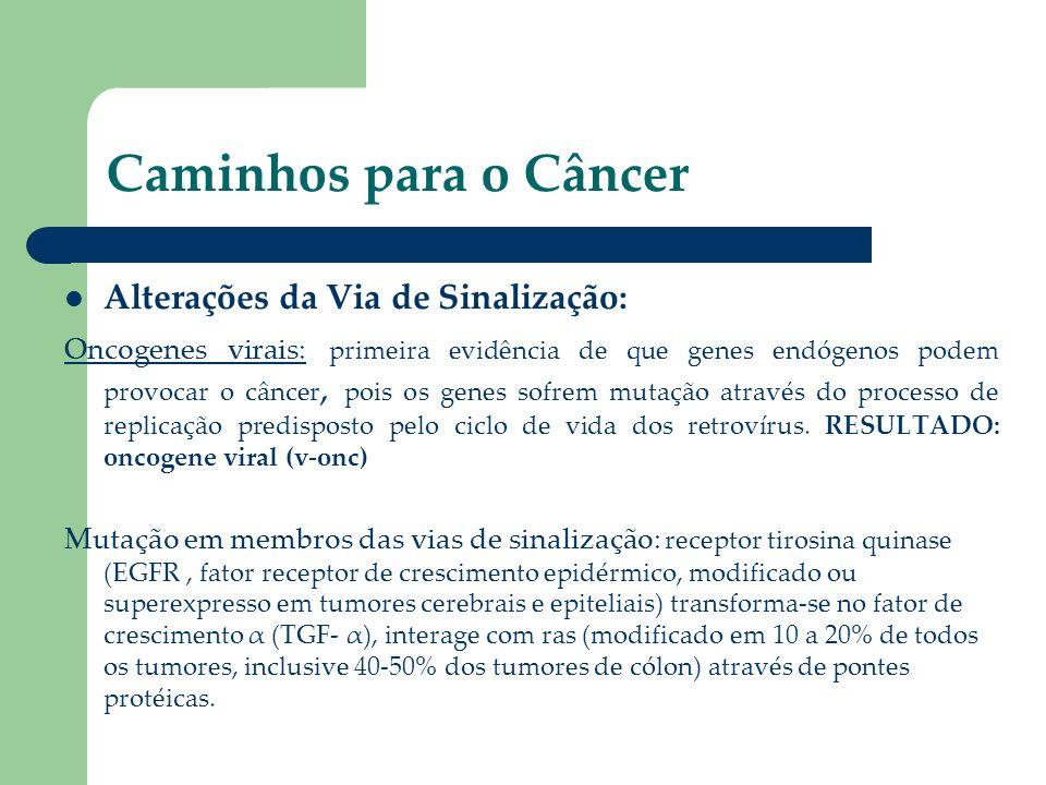 Caminhos para o Câncer Alterações da Via de Sinalização: