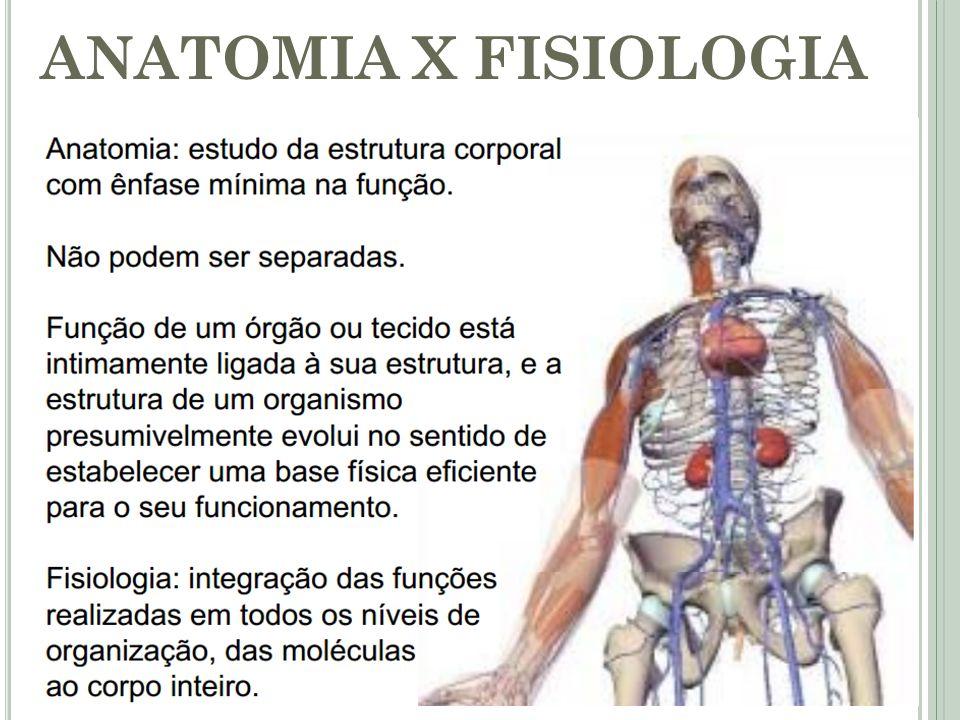Moderno Cómo Pasar Anatomía Y Fisiología Humana Imagen - Anatomía de ...