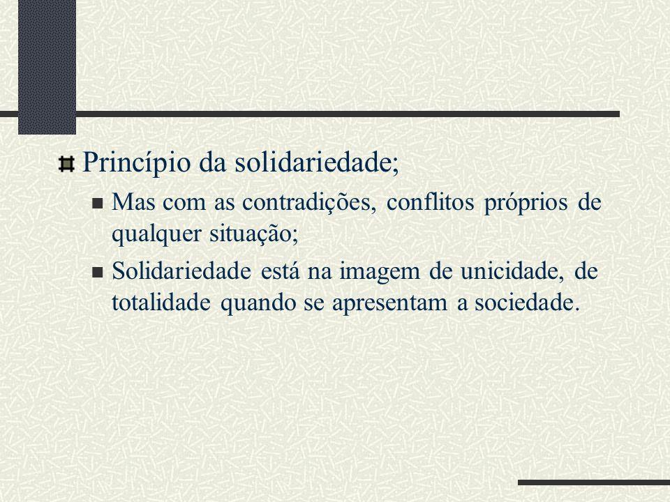 Princípio da solidariedade;