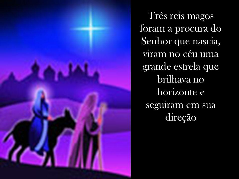 Três reis magos foram a procura do Senhor que nascia, viram no céu uma grande estrela que brilhava no horizonte e seguiram em sua direção