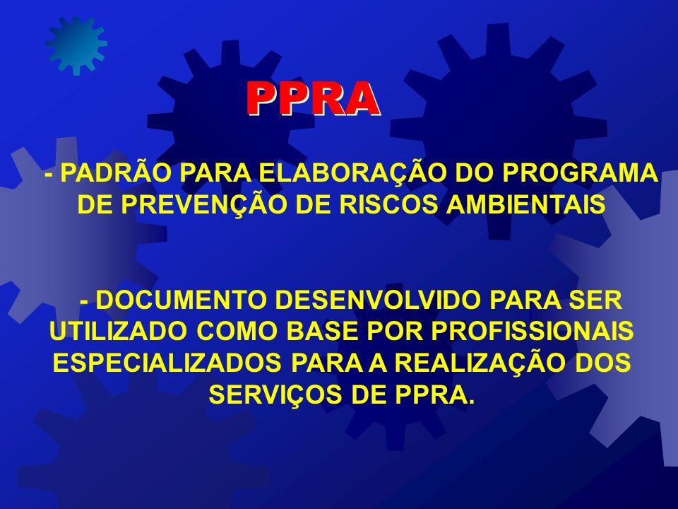 - PADRÃO PARA ELABORAÇÃO DO PROGRAMA DE PREVENÇÃO DE RISCOS AMBIENTAIS